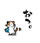 さかにゃあ(個別スタンプ:03)