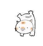 平凡が一番な猫達(個別スタンプ:11)