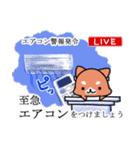 しば犬大福1(個別スタンプ:04)