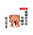 しば犬大福1(個別スタンプ:08)