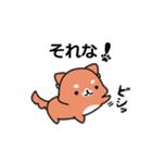 しば犬大福1(個別スタンプ:27)