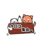 しば犬大福1(個別スタンプ:29)