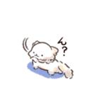 しば犬大福1(個別スタンプ:30)