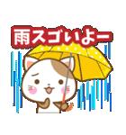 子犬と子猫の【真夏&秋】(個別スタンプ:27)