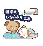 子犬と子猫の【真夏&秋】(個別スタンプ:39)