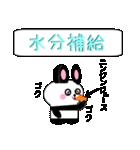 ミニうさパンダ1 夏編(個別スタンプ:06)