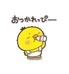 ひよこのぴっぴ(個別スタンプ:03)
