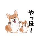 動くヨ!コーギー(個別スタンプ:3)