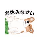 動くヨ!コーギー(個別スタンプ:7)