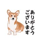 動くヨ!コーギー(個別スタンプ:9)