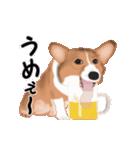 動くヨ!コーギー(個別スタンプ:22)