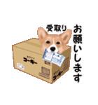 動くヨ!コーギー(個別スタンプ:24)