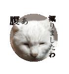 ちぃちゃん2(個別スタンプ:10)