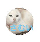 ちぃちゃん2(個別スタンプ:18)
