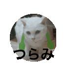 ちぃちゃん2(個別スタンプ:21)