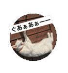 ちぃちゃん2(個別スタンプ:22)