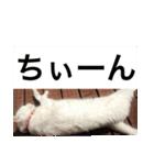 ちぃちゃん2(個別スタンプ:24)