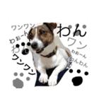 ゆげるすたんぷ3(個別スタンプ:27)