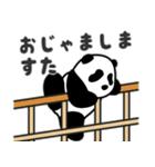 ぱんだーらんど(個別スタンプ:16)