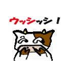 日常inうし(個別スタンプ:01)