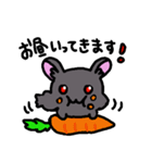 絶滅危惧種うさぎ(アマミノクロウサギ)敬語(個別スタンプ:08)