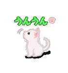 よちよち子猫 短い言葉(個別スタンプ:17)