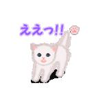 よちよち子猫 短い言葉(個別スタンプ:24)