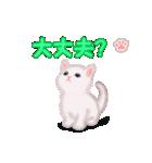 よちよち子猫 短い言葉(個別スタンプ:33)