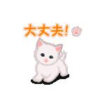 よちよち子猫 短い言葉(個別スタンプ:34)