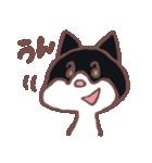 ハチワレ猫のにゃむねこ(個別スタンプ:05)