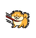 動く!むっちりでかわいい柴犬(個別スタンプ:02)