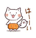 かぼちゃパンツの猫 2018(個別スタンプ:17)