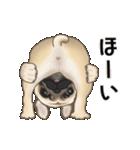 動くヨ! パグッちⅡ(個別スタンプ:4)