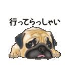 動くヨ! パグッちⅡ(個別スタンプ:5)