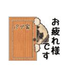 動くヨ! パグッちⅡ(個別スタンプ:6)