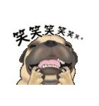 動くヨ! パグッちⅡ(個別スタンプ:14)