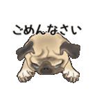 動くヨ! パグッちⅡ(個別スタンプ:15)