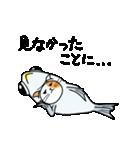 【動く】秋刀魚を被ったネコ(秋冬編)(個別スタンプ:13)