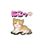 ちび猫2 でか文字オノマトペ(個別スタンプ:3)