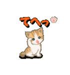 ちび猫2 でか文字オノマトペ(個別スタンプ:4)