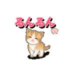 ちび猫2 でか文字オノマトペ(個別スタンプ:6)