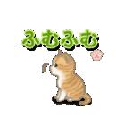 ちび猫2 でか文字オノマトペ(個別スタンプ:12)