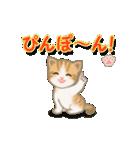 ちび猫2 でか文字オノマトペ(個別スタンプ:14)