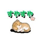 ちび猫2 でか文字オノマトペ(個別スタンプ:18)