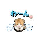 ちび猫2 でか文字オノマトペ(個別スタンプ:22)