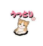 ちび猫2 でか文字オノマトペ(個別スタンプ:25)