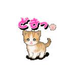 ちび猫2 でか文字オノマトペ(個別スタンプ:30)