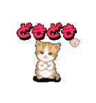 ちび猫2 でか文字オノマトペ(個別スタンプ:31)