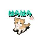 ちび猫2 でか文字オノマトペ(個別スタンプ:37)