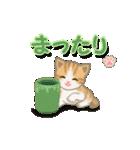 ちび猫2 でか文字オノマトペ(個別スタンプ:39)